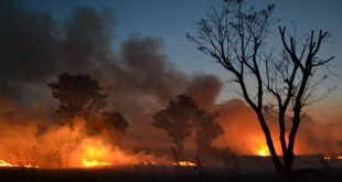 Foto: Incendio en pastizal   Kiosco Informativo