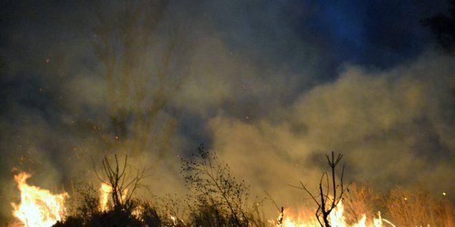 Foto: Incendio en pastizal | Kiosco Informativo