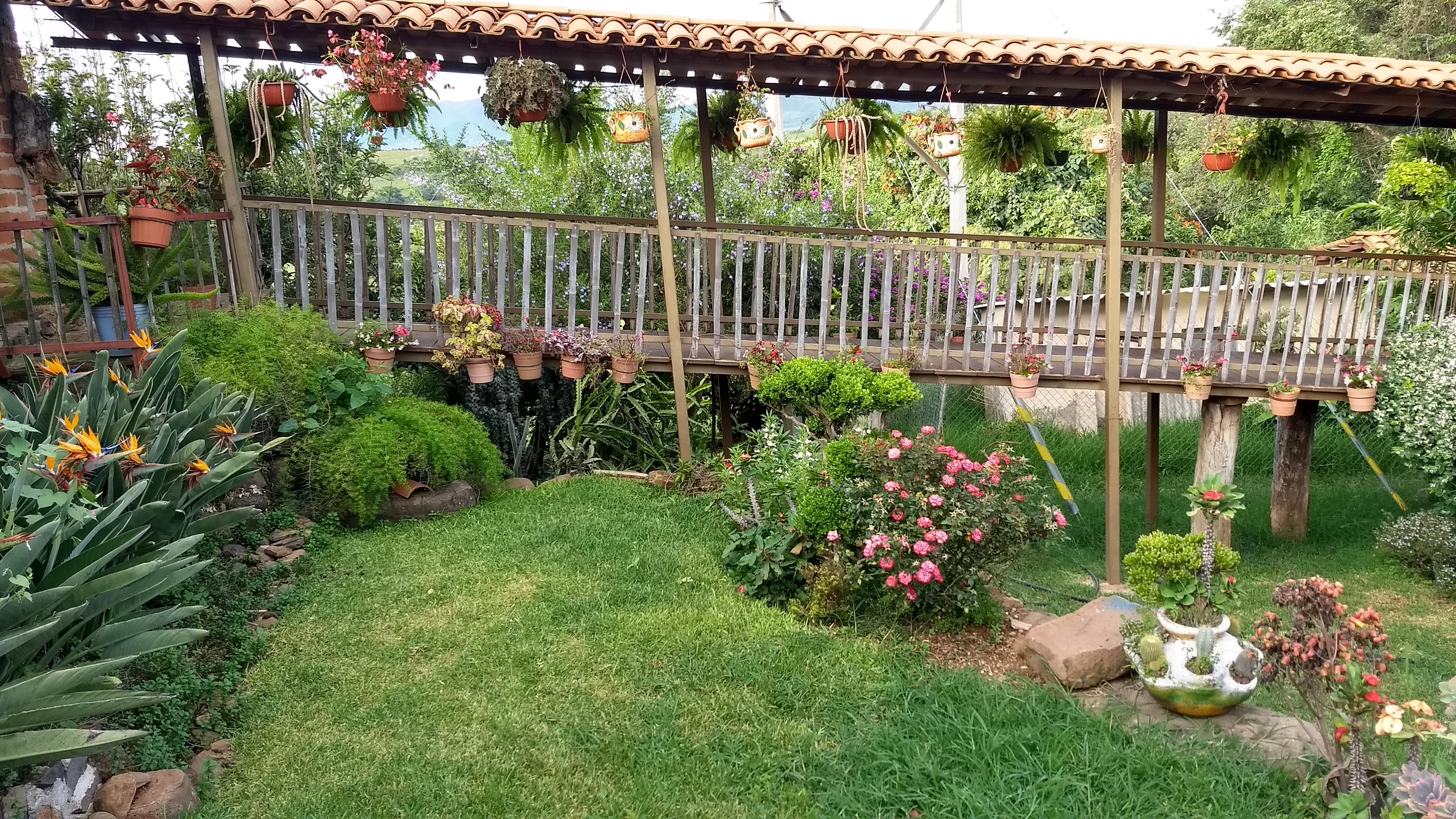 Foto: Jardines en la Violeta   Eduardo Castellanos